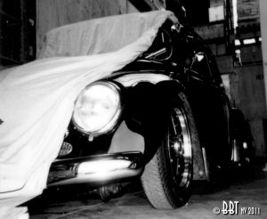 Beetle Car Cover