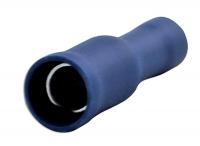 Blue Bullet Terminal - Female